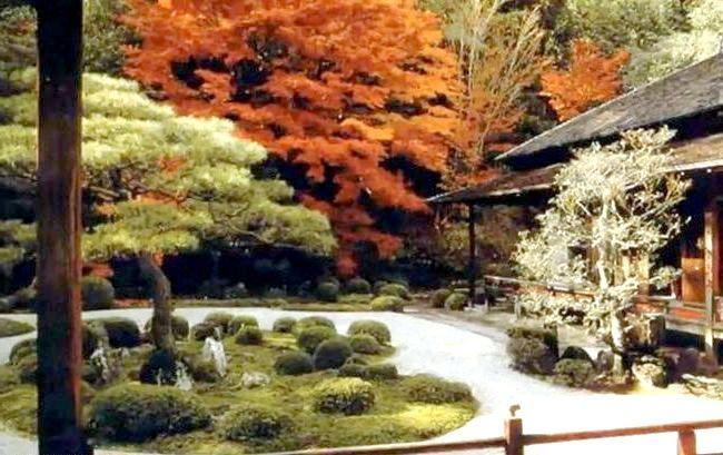 Фото - Квіти в японському саду