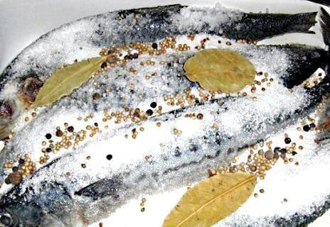 Фото - Як коптити рибу в домашніх умовах?
