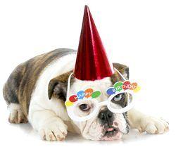 Фото - Як оригінально привітати з днем народження