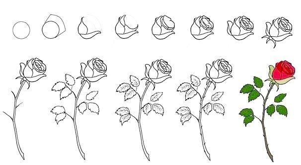 Як малювати квіти. Уроки малювання для дітей.