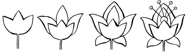 Фото - Як малювати квіти
