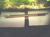 Фото - Як зробити довгий акваріумний пінцет своїми руками?