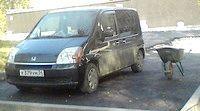 Фото - Як уберегти автомобіль від викрадення за допомогою протиугінною маркування