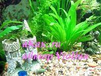 Фото - Як вибрати акваріумний грунт. Види акваріумних грунтів