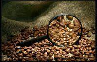 Фото - Як вибрати каву